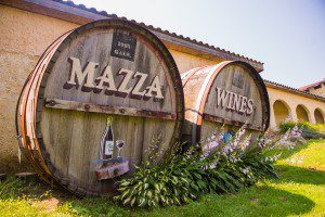 Mazza-Vineyards-Externals_012